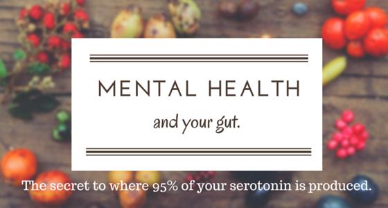 Why Mental Health Begins In The Gut Nourishing Souls